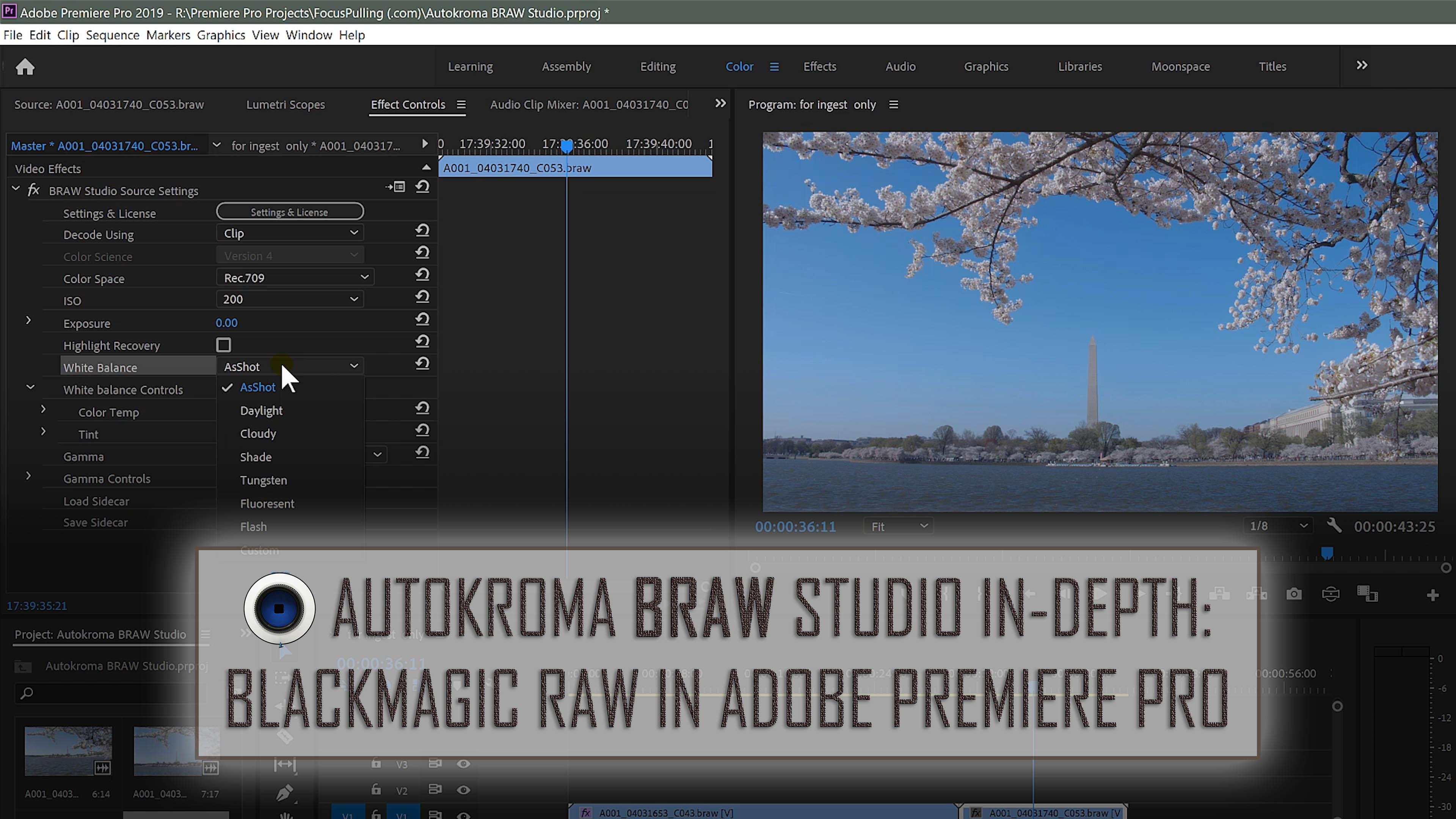 BRAW Studio In-Depth: Using Blackmagic RAW in Adobe Premiere